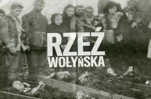 Поляки получили по истории…