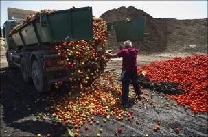 Россия продлевает эмбарго на продукты
