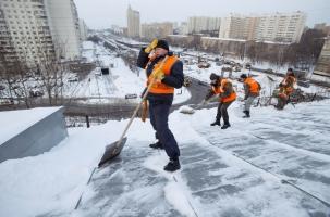В Москве потерялись 60 тысяч дворников
