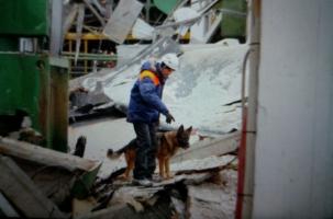 Катастрофа на заводе установок С-300 и «Бук»