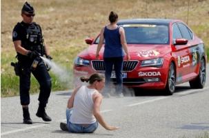 Слезоточивый газ фермерам, овцам и велогонщикам Тур де Франс