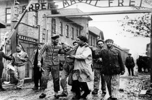 Глава МИД Польши спекулирует на Освенциме