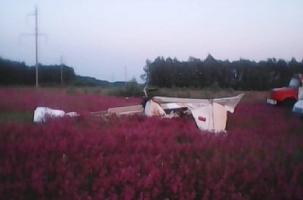 Самолет разбился в цветущем поле